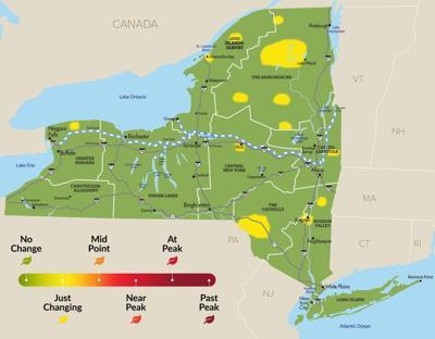 Fall foliage map week 1