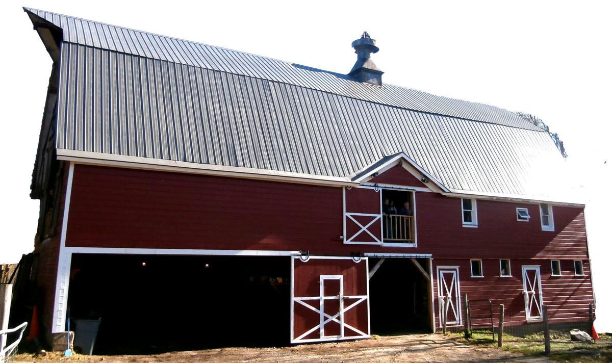 Nettle Meadow Farm