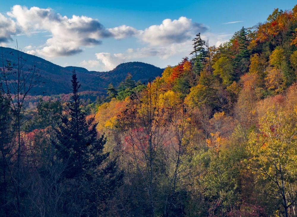 Keene Valley foliage