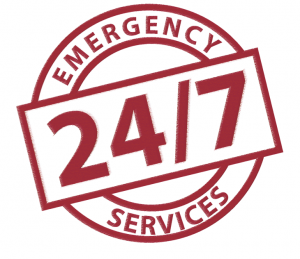 emergency-services-300x259.png