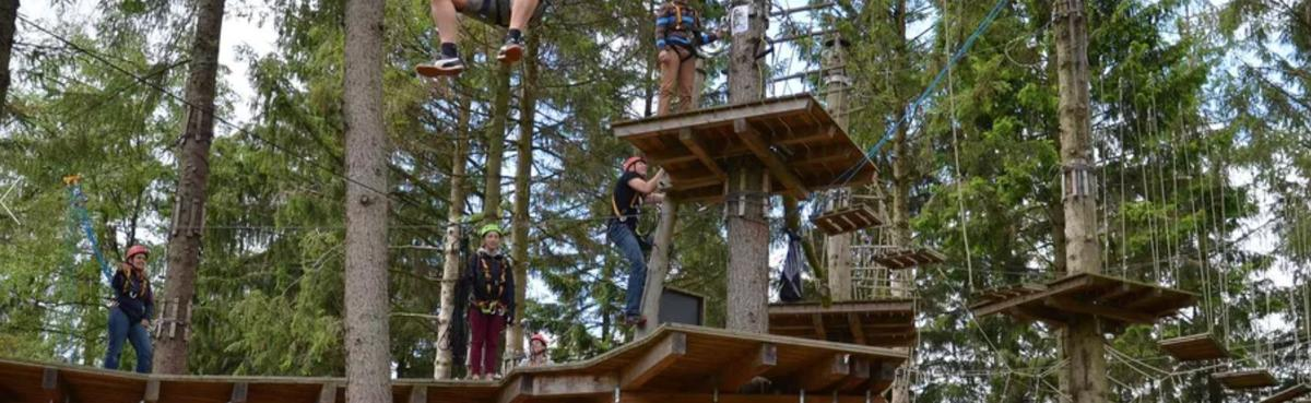 Outfitter proposes zip line, treetop adventure course in