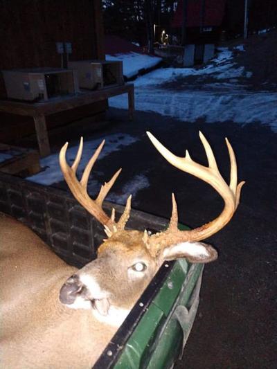 Warren County buck