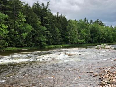 East Branch Ausable