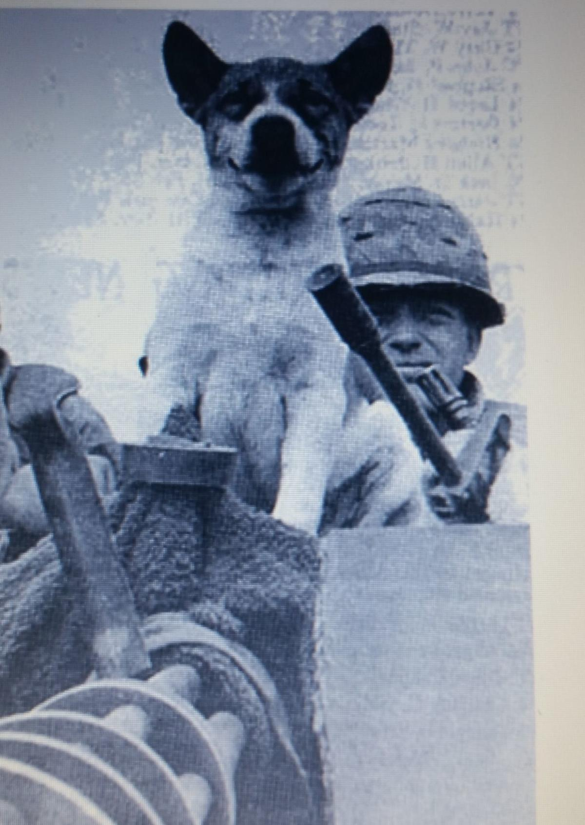 Keith Bishop in Vietnam with a dog named Sue and a mini gun. This photo was featured in the Stars and Stripes magazine.jpg
