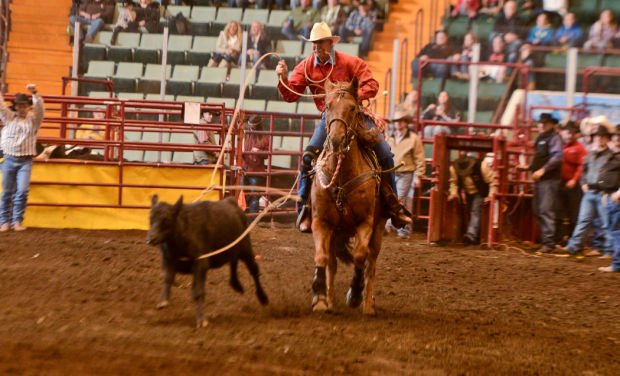 For Some Rodeo Is A Way Of Life