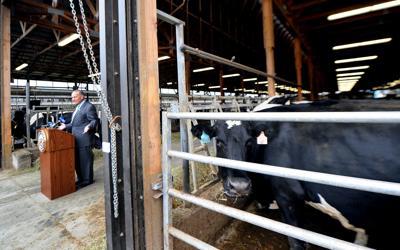 Schumer visits farm