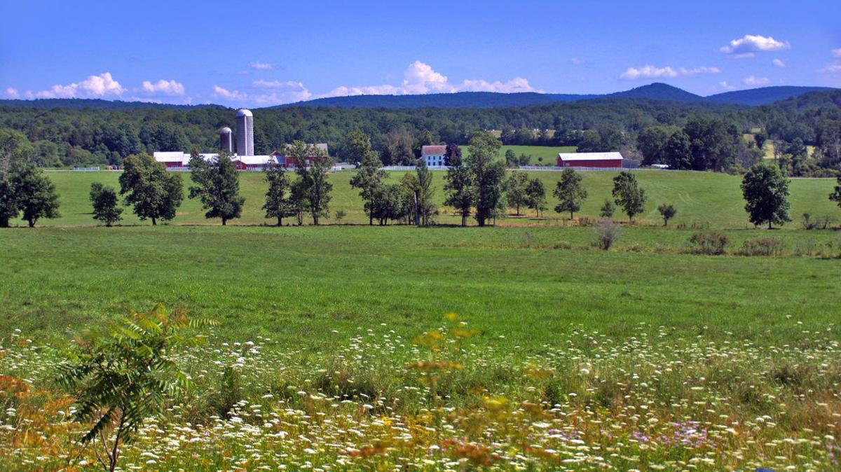 Four Washington County farms saved in latest state land