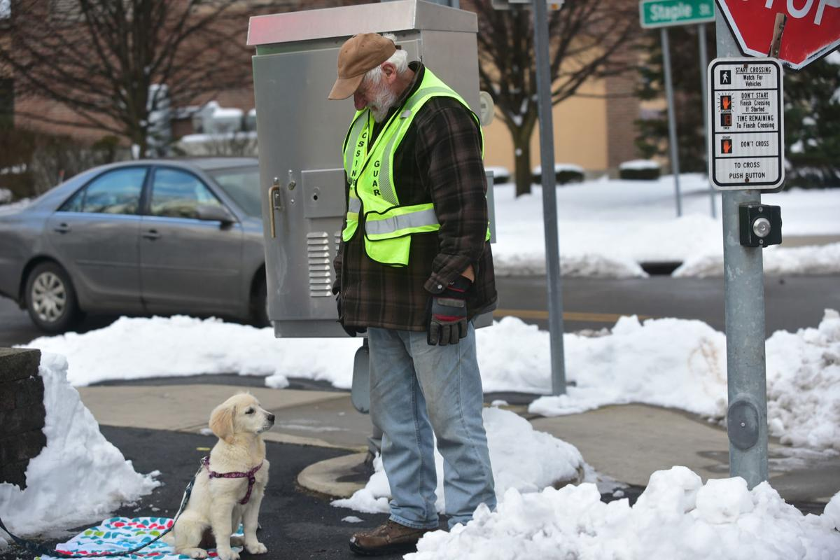 Glens Falls crossing guard has new canine partner | Local ...