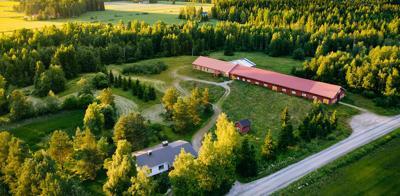 Farmhouse Scene
