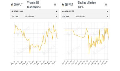 Vitamin B3 & Choline Chloride