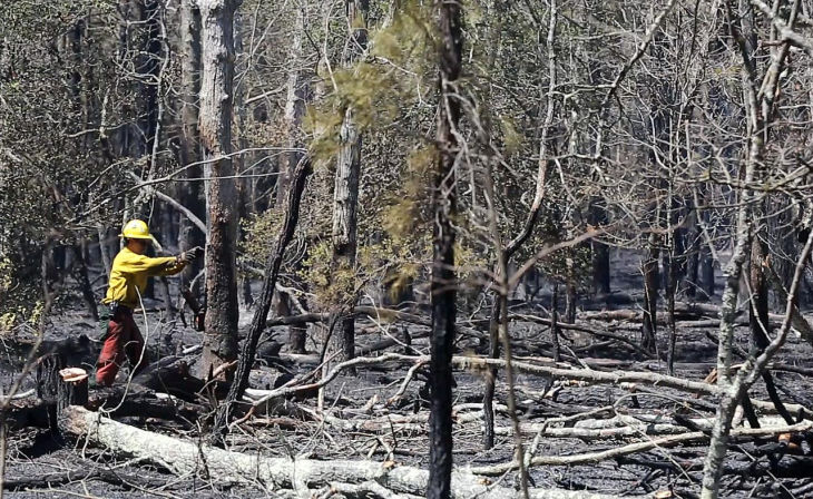 Forest Fire Cumberland
