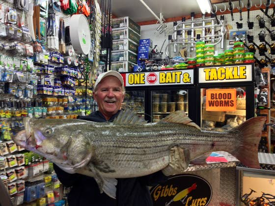 Shep on Fishing: Absecon's Jospeh Cook catches 47-pound striper on Atlantic City beach