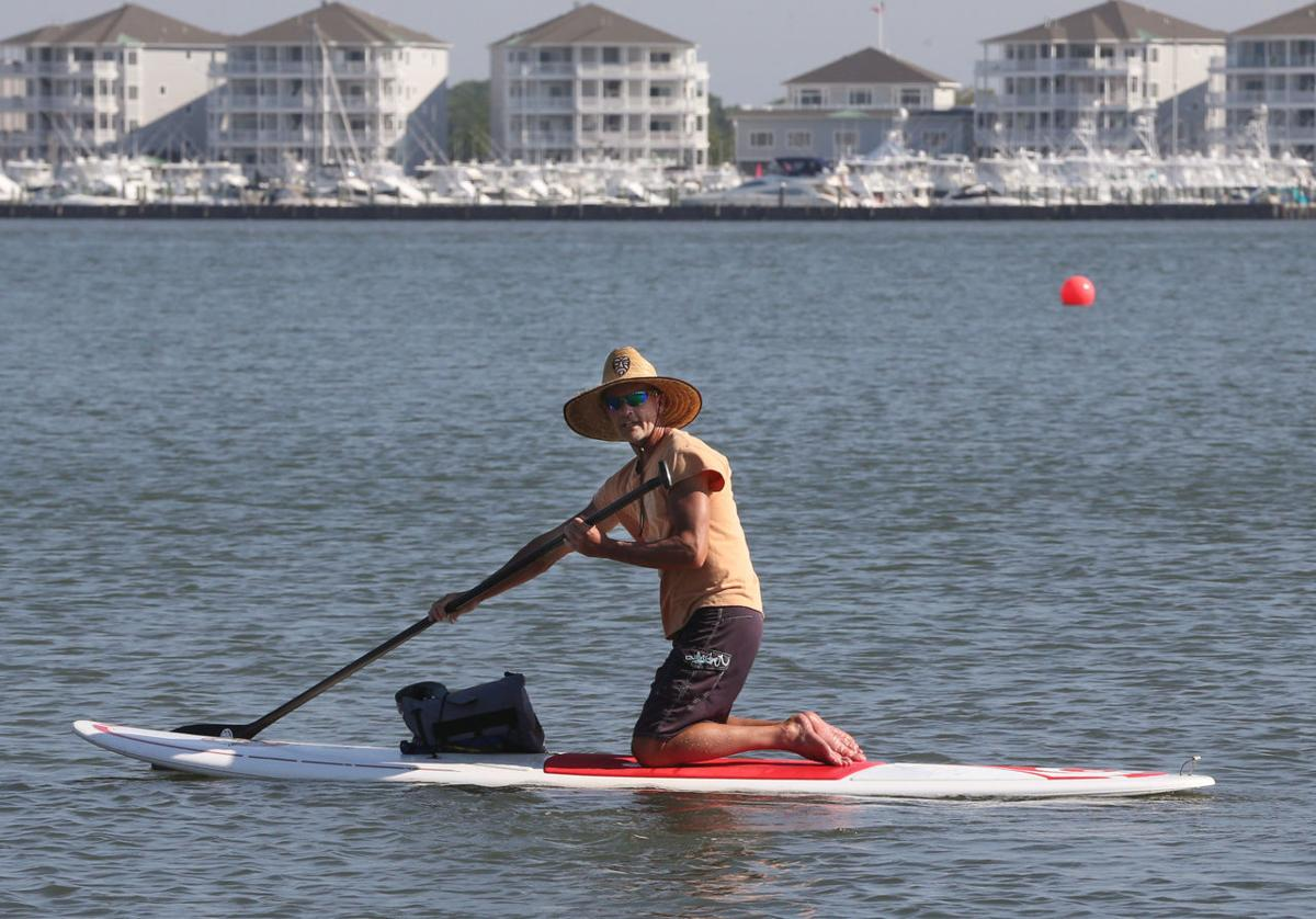 Explore the Shore paddle boards