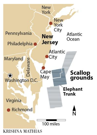 Scallop grounds off Cape May map
