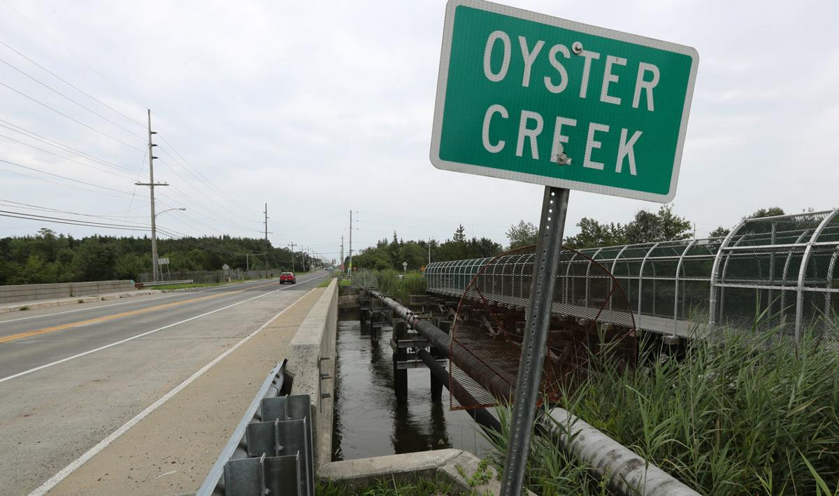 Oyster Creek Nuclear Plant