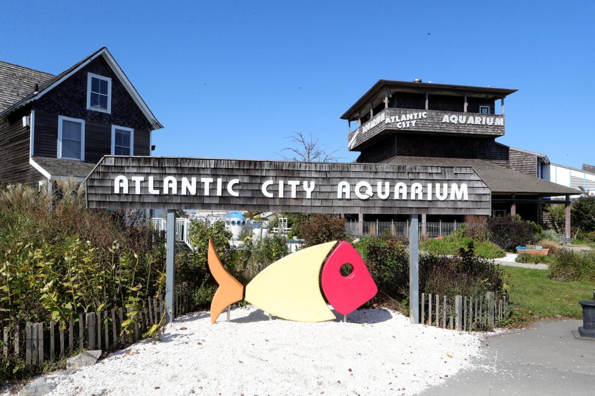 Sunny Atlantic City