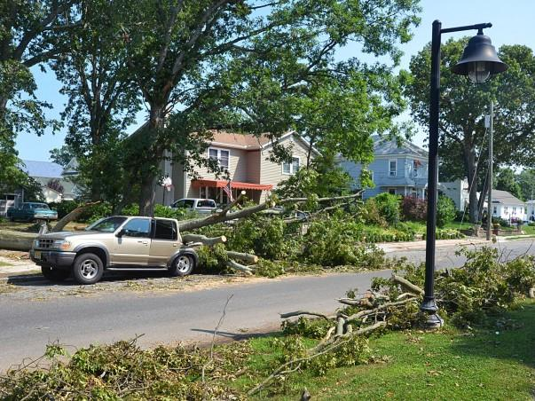 Storm Clean-Up Sunday