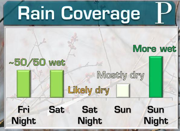 Rain Coverage
