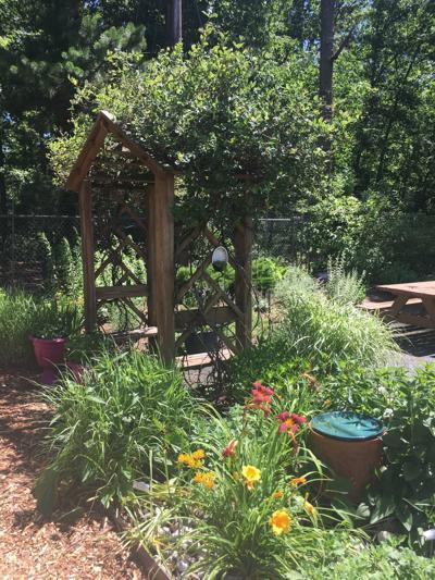 Master gardener demonstration garden