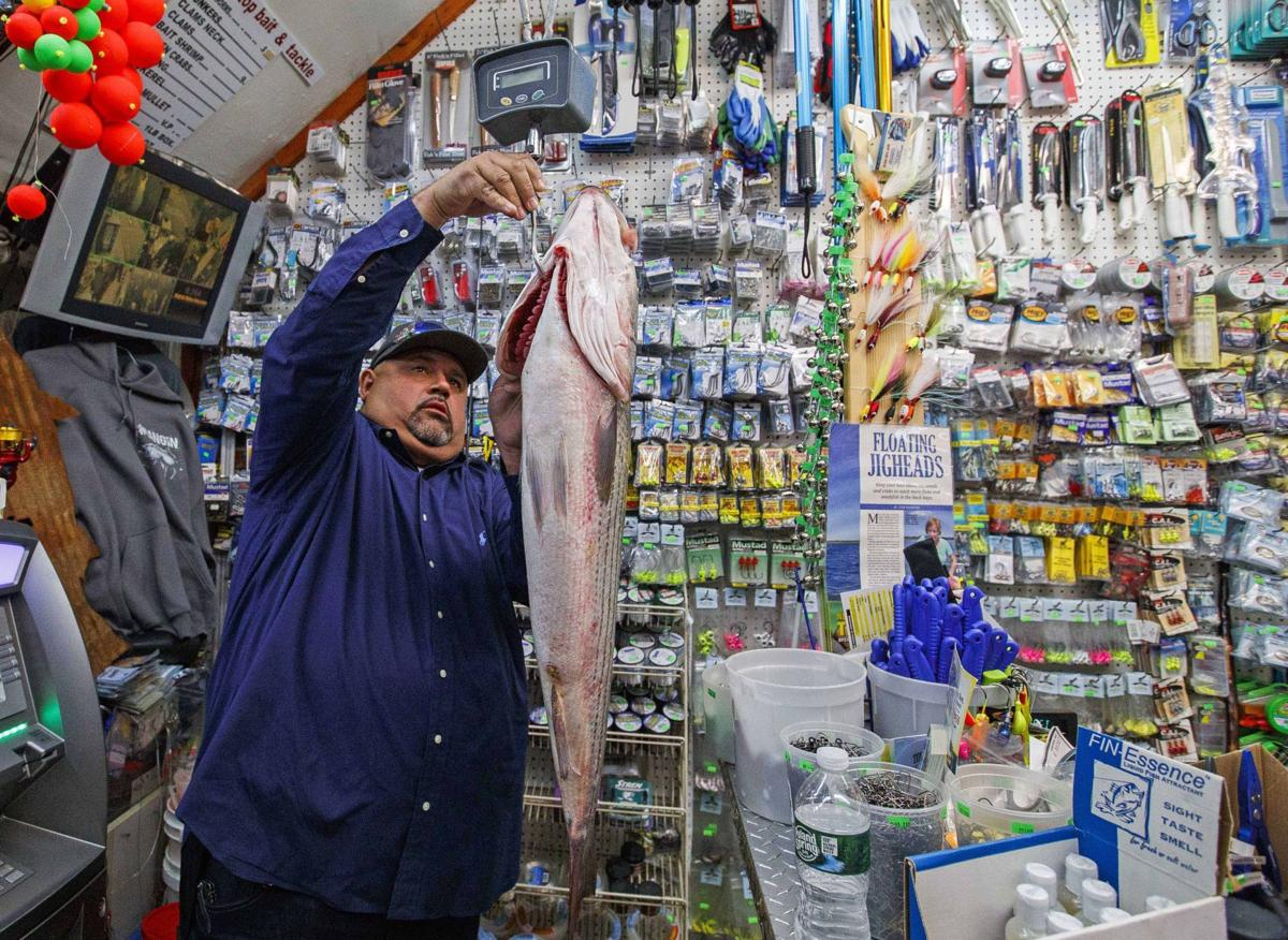 Fish Fight As Striped Bass Numbers Fall, Jersey Shore Anglers Split Over New Rules  Local News  Pressofatlanticcitycom-1975
