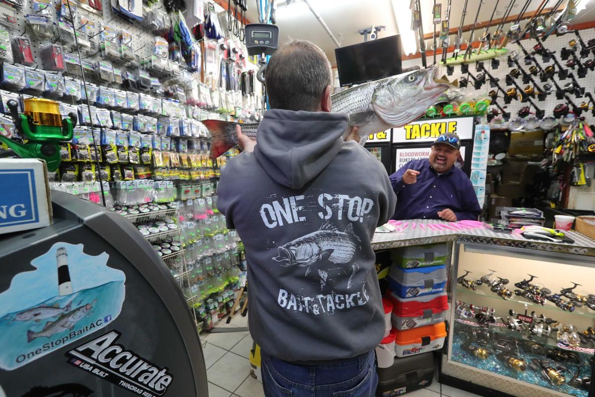 Fish Fight As Striped Bass Numbers Fall, Jersey Shore Anglers Split Over New Rules  News  Pressofatlanticcitycom-1795