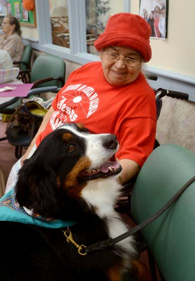 Healing on four legsTherapy dogs help patients in need of contact and affection