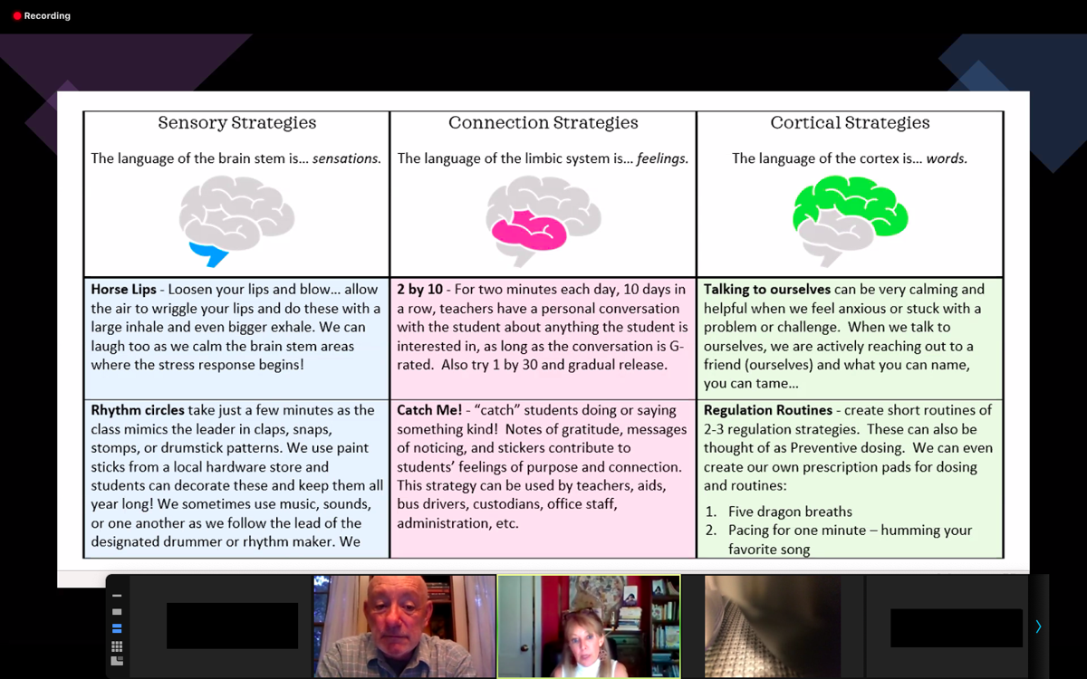 A screen shot from the COVID-19 parenting seminar