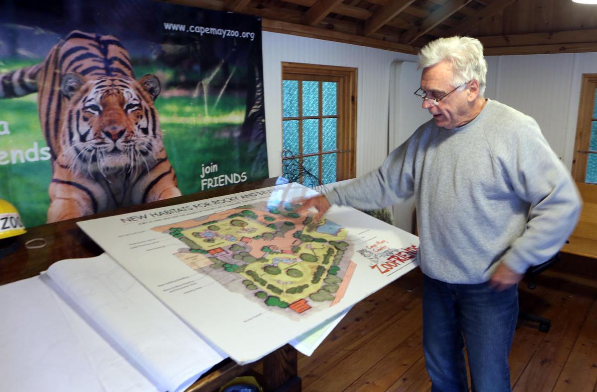 Zoo Leopard Exhibit