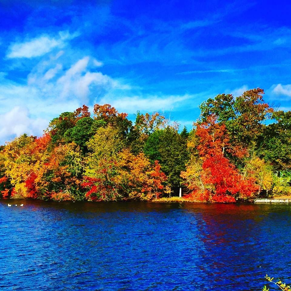 Fall foliage in Port Republic