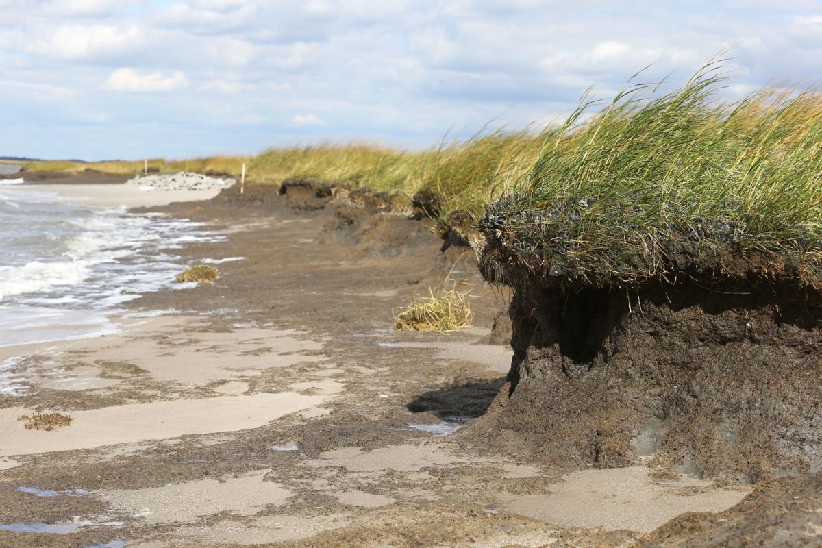 103116_nws_shorelines