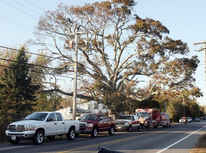 Dennis Township man dies after tree limb falls on him | News