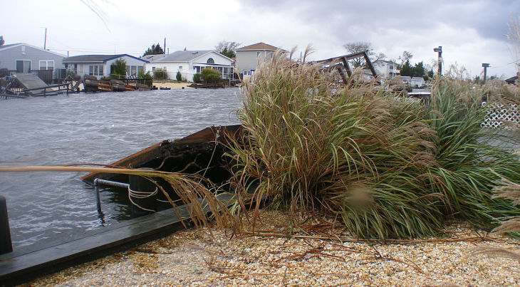Sandy Displaced Video