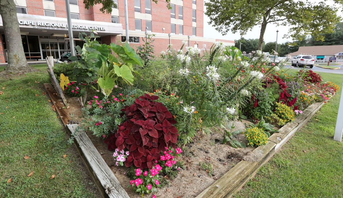 The flowering beauty of leaming 39 s run echoed at cape regional medical center living for Gardens regional hospital and medical center