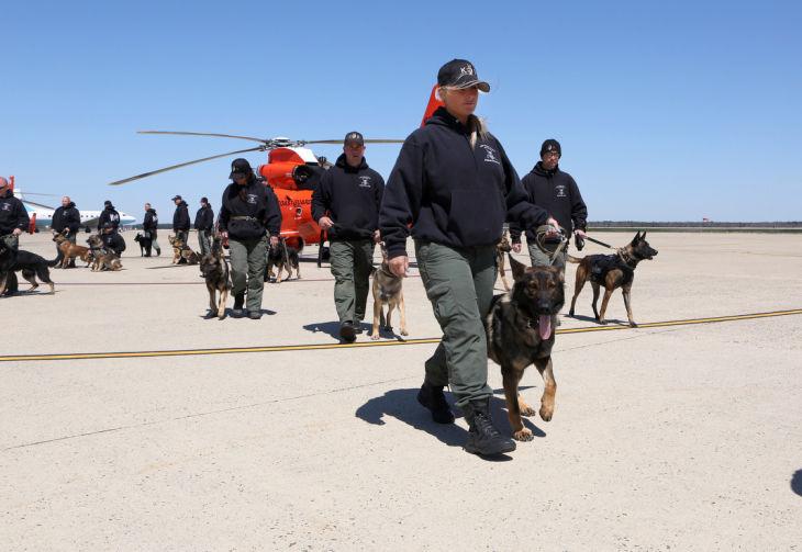 Dog Training Galloway Nj