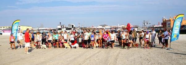 Doggie-Dash-Race7