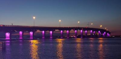 070419_goc_purplebridge1