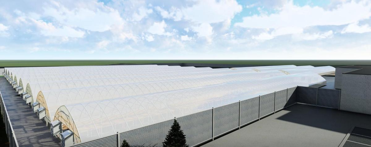 A rendering of Superior Grow Labs at 11 Devins Lane in Pleasantville