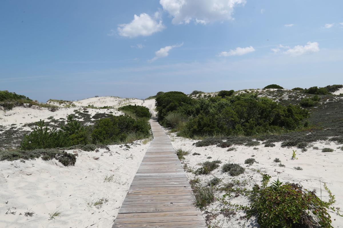 Barnegat Light Mostly Sunny Sand Dunes