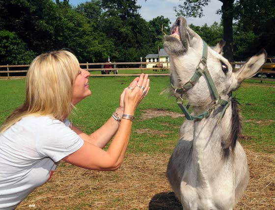 Funny Farm in Mays Landing gives a home to unwanted farm animals, pets of all stripes