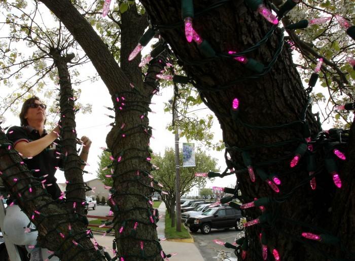 casey feldman tree