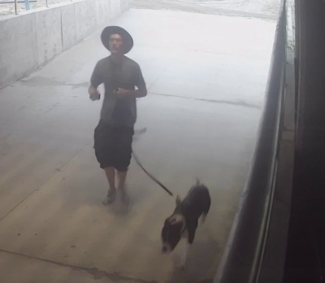 Wildwood Police attempting to identify a dog owner
