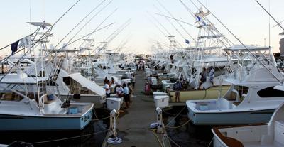 Living Guide Catamaran