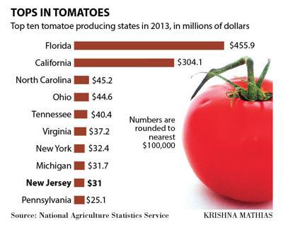 Top tomato states chart 8-2015