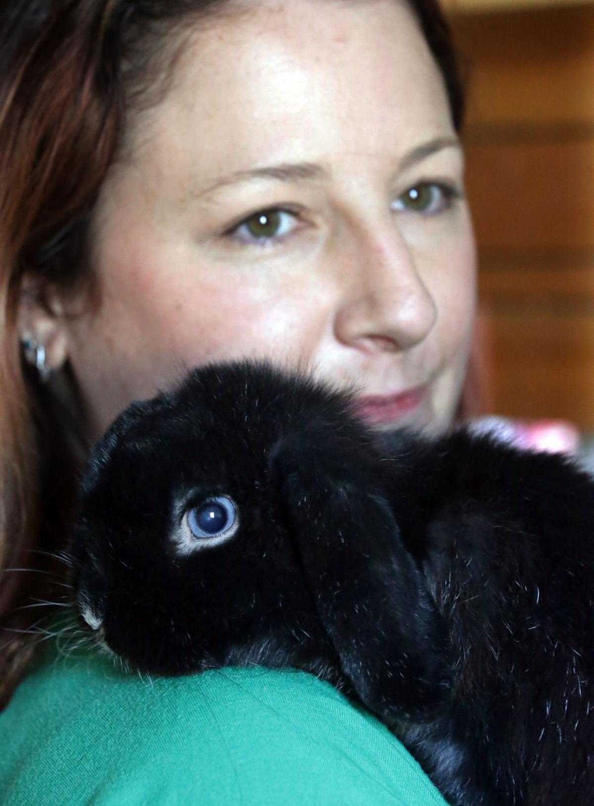 m26 rabbit breeders
