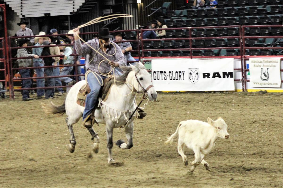 ACP Rodeo Calf Rope 4