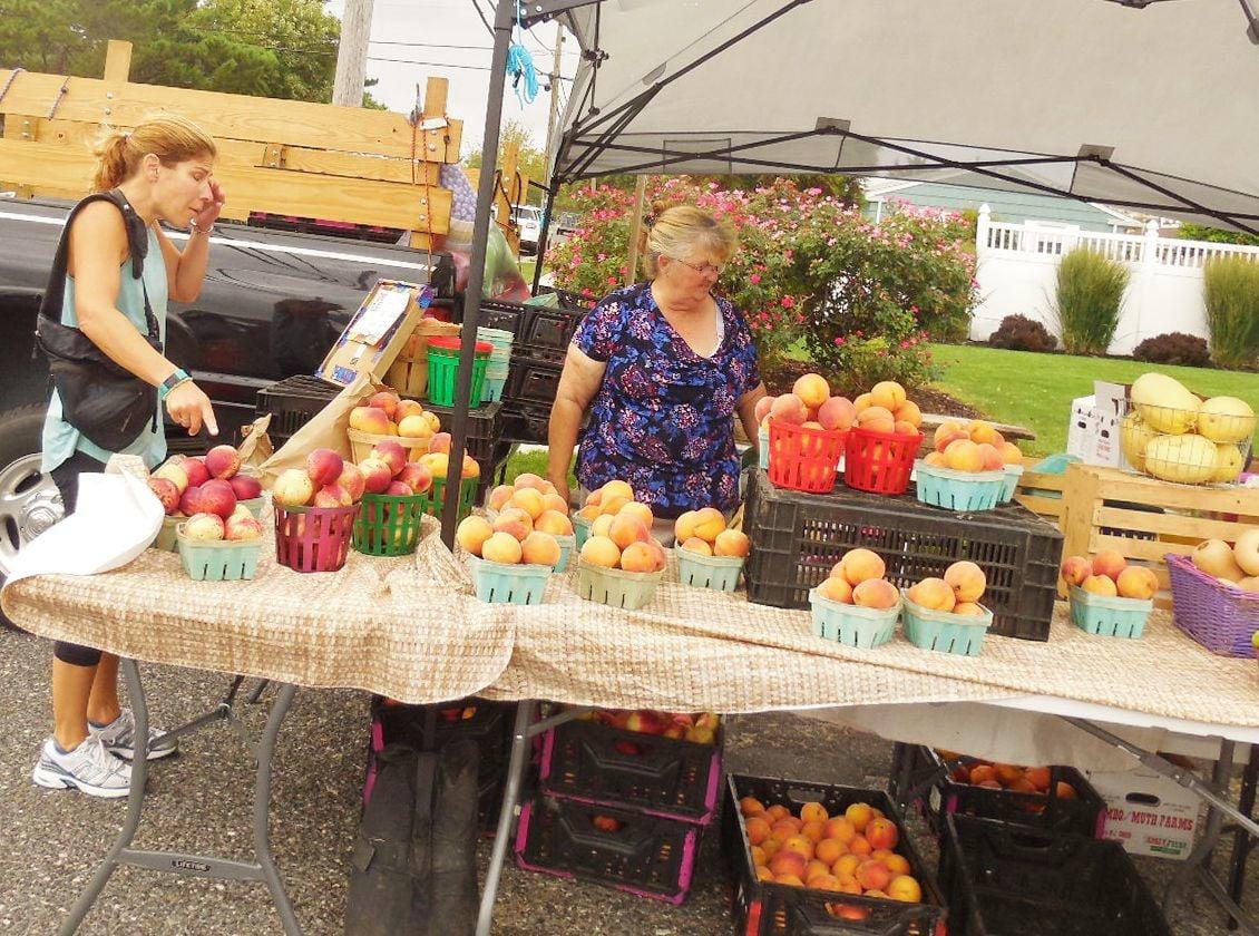Brigantine Farmers Market (1).JPG