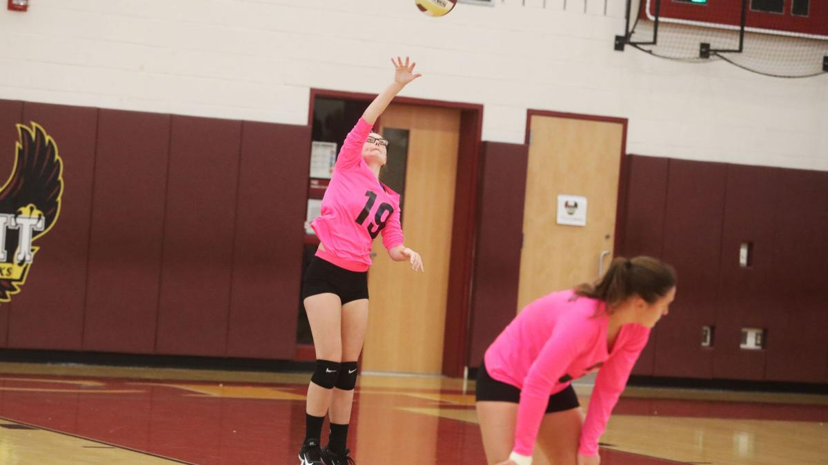GALLERY: Pleasantville at ACIT girls volleyball