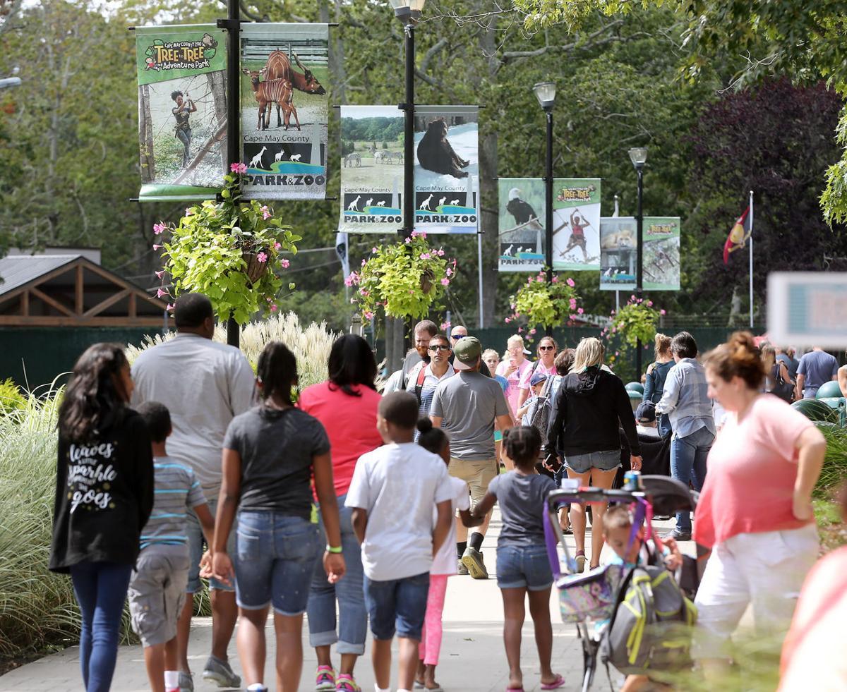 Zoo Park Crowd