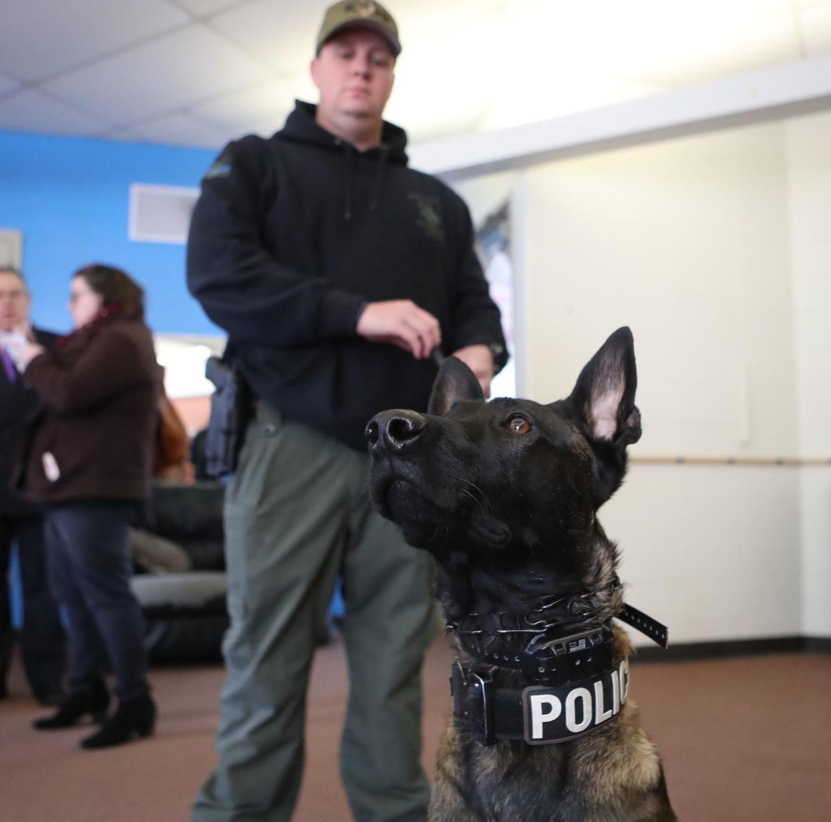 Law Enforcement Say Trained Dogs In Schools Deter Shooters