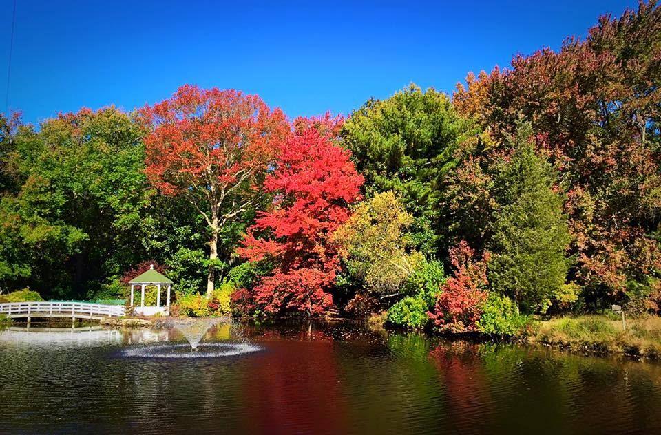 South Jersey fall foliage
